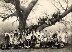 Antique picture of a large family; Size=240 pixels wide